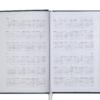 Ежедневник А6 карманный датированный 2019 BRILLIANT бордовый, твердая обложка 20575