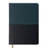 Ежедневник А6 карманный датированный 2019 QUATTRO т-зеленый с черным