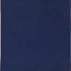 Ежедневник А6 недатированный AMAZONIA синий, серебристый срез