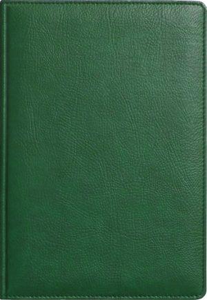 Обложка АМАДЕЙ зеленый