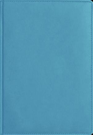 Обложка ФЕДЕРИКО небесно-голубой