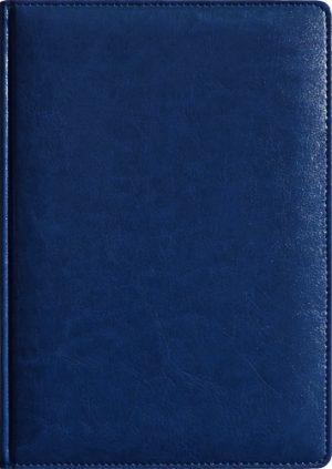 Обложка ТЕОДОР синий