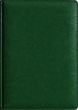 Обложка ТЕОДОР зеленый