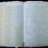 """Дневник школьный SPRING, B5, 48 листов, твердая обложка """"сендвич"""" 18283"""