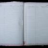 """Дневник школьный SPRING, B5, 48 листов, твердая обложка """"сендвич"""" 18275"""