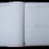 """Дневник школьный SPRING, B5, 48 листов, твердая обложка """"сендвич"""" 18276"""
