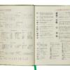 Ежедневник датированный 2021 ORION, A5, зеленый 19577