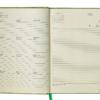 Ежедневник датированный 2021 ORION, A5, зеленый 19578