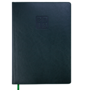 Ежедневник 2019 А4 BRAVO(Soft) датированный зеленый, кремовый блок