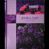 Книга канцелярская BOHO CHIC А4, 96 листов, твердая обложка, клетка, фиолетовый