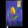Ежедневник А6 недатированный GRACE фиолетовый