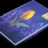 Ежедневник А6 недатированный GRACE фиолетовый 22160