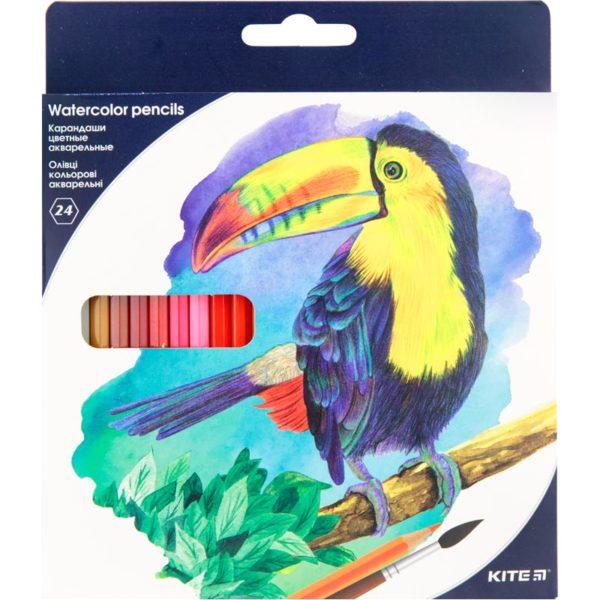 """Карандаши цветные акварельные с кистью, """"Птицы"""" 24 цвета, Kite K18-1050"""
