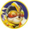 Рюкзак школьный каркасный Kite Education Paw Patrol PAW20-501S 37987