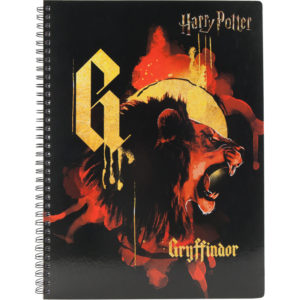 Колледж-блок А4, Kite Harry Potter HP20-247-2 80 арк., микроперф, 4 отв. клетка