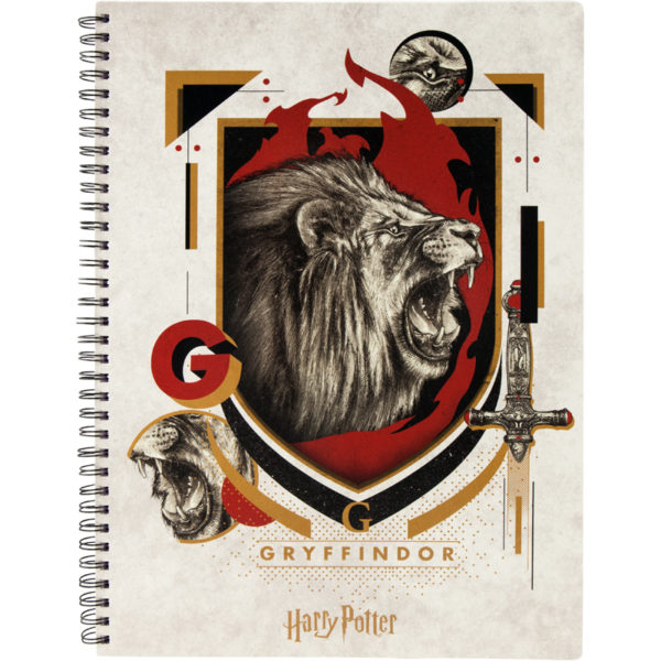 Колледж-блок А4, Kite Harry Potter HP20-247-3 80 арк., микроперф, 4 отв. клетка