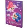 Дневник школьный Shimmer&Shine 165х230мм, твердая обложка SH20-262-1 39948