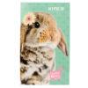 Блокнот-планшет Kite Studio Pets-2 А6, 50 листов, нелинованный SP19-195-2 (12шт/уп) 39666