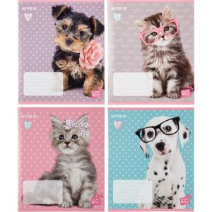 Тетрадь школьная Kite Studio Pets, 12 листов, клетка SP20-232
