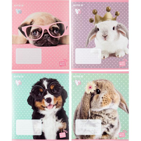 Тетрадь школьная Kite Studio Pets, 12 листов, в линию, SP20-234