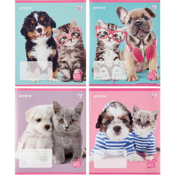 Тетрадь школьная Kite Studio Pets, 18 листов, клетка SP20-236