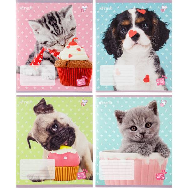 Тетрадь школьная Kite Studio Pets, 18 листов, линия SP20-237