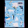 Блокнот KIDS Line PATTERN, 150 x 202 мм, 64 листа, клетка, мягкая обложка, голубой ZB.12767-14