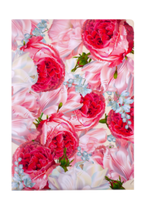 Папка-уголок А4, ROMANCE, розовый
