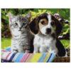 Картина для росписи по номерам «Котенок и щенок», 40х50см