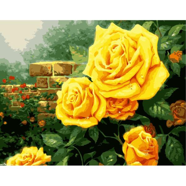 Картина для росписи по номерам «Желтые розы в саду», 40х50см