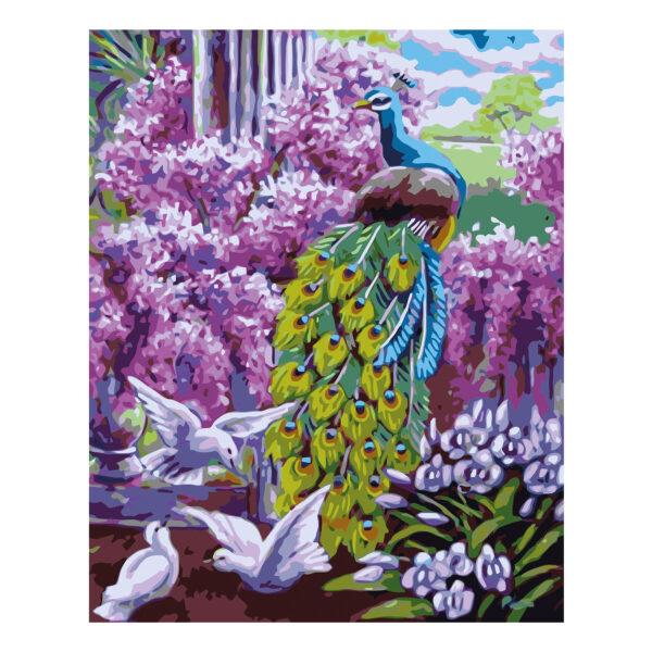 Картина для росписи по номерам «Павлин и цветы», 40х50см