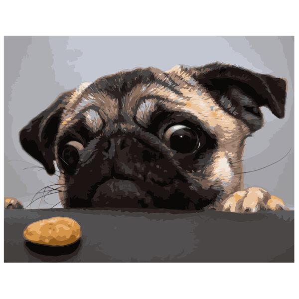Картина для росписи по номерам «Мопс и печенье», 40х50см