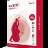 Бумага А4 Maestro Standard+ офисная, белая, класс В, 80г/м, 500лист/пачка