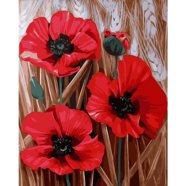 Картина для росписи по номерам «Три алых цветка мака», 40х50см