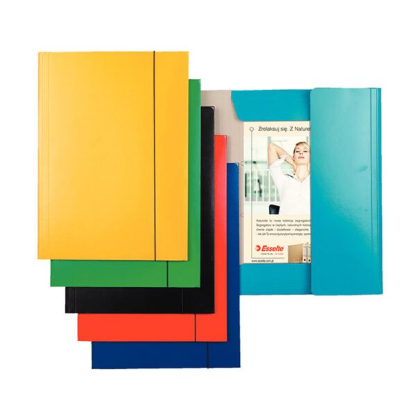 Папка картонная А4 на резинке ESSELTE