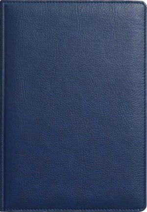 Обложка АМАДЕЙ синий